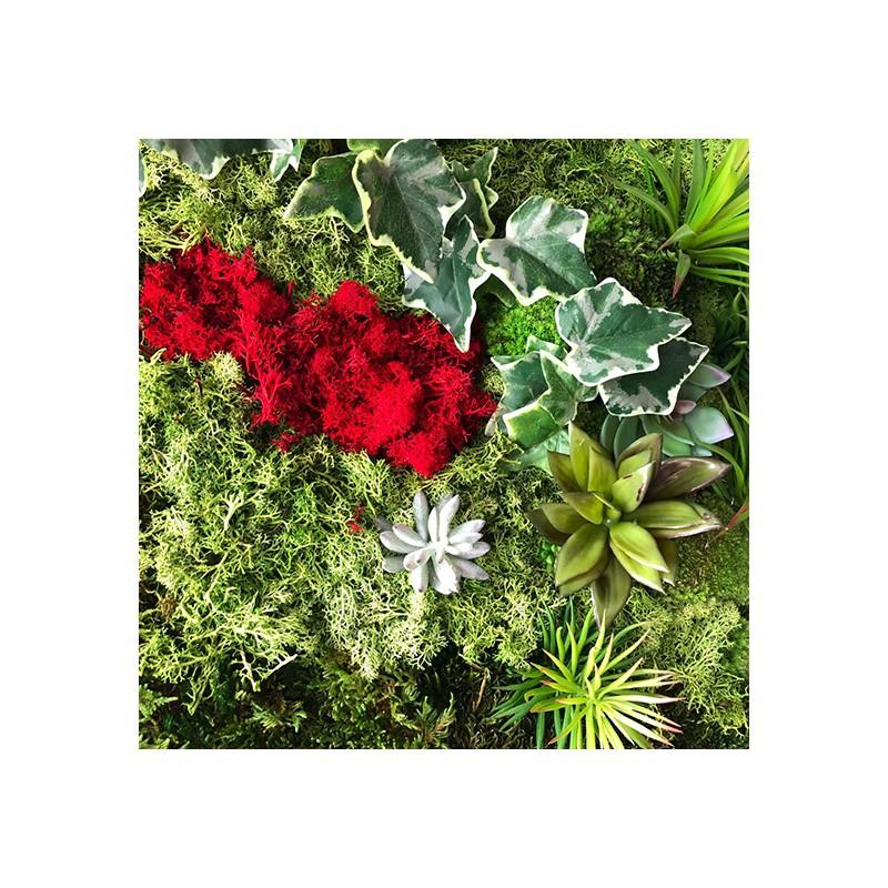 Jard n vertical con musgo preservado y plantas artificiales for Jardines con plantas artificiales