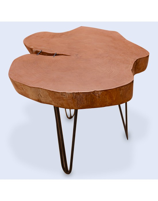 Mesa de centro rodaja de madera