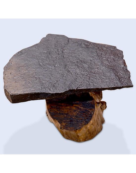 Mesa centro piedra y tronco