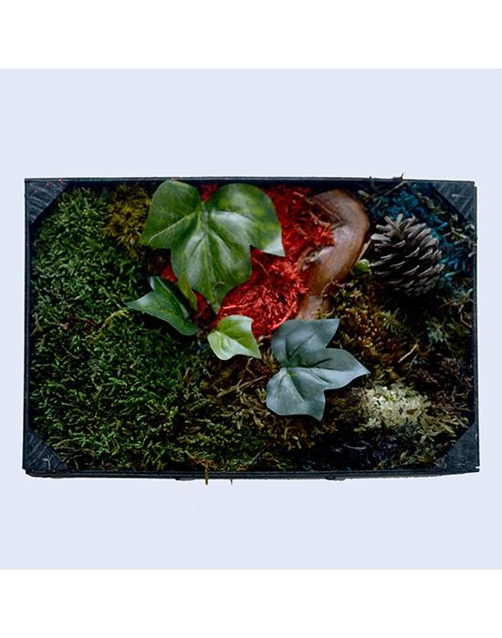 Mini Jardín vertical con musgo preservado